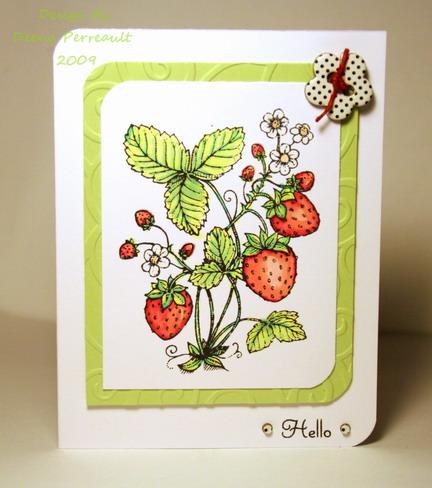 IMG_8961 Strawberry Fields w 30