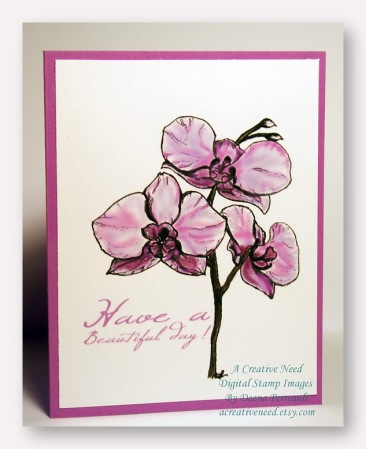 Orchids beautiful day etsy
